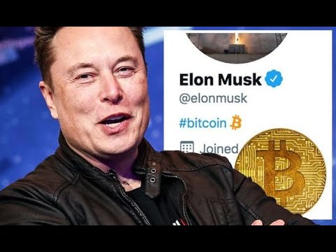 Elon Musk Talks About Bitcoin! (Cryptocurrency News Daily)