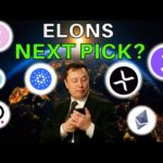 BIG NEWS: What's Elon Musk's Next Crypto Investment? | (FIND OUT)