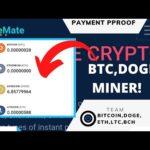 Dogemate Payment proof!!!!(BTC,ETH,DOGE MINING SITE!)Scam or legit!)